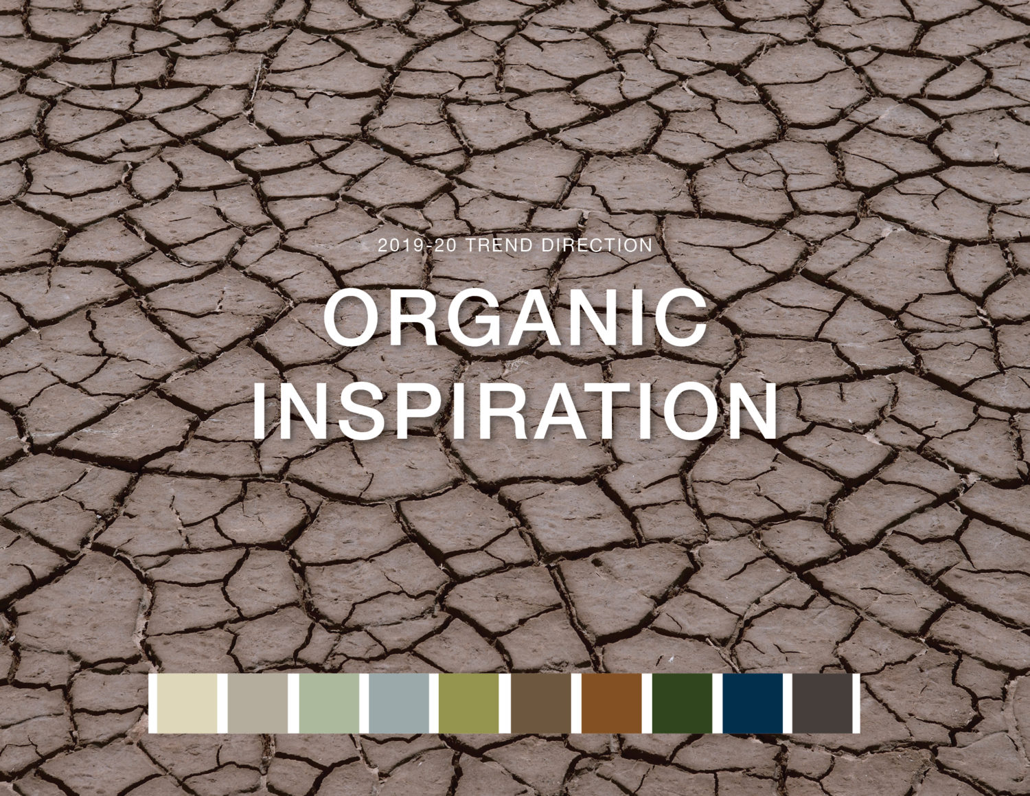 Wellness Trend: Organic Inspiration