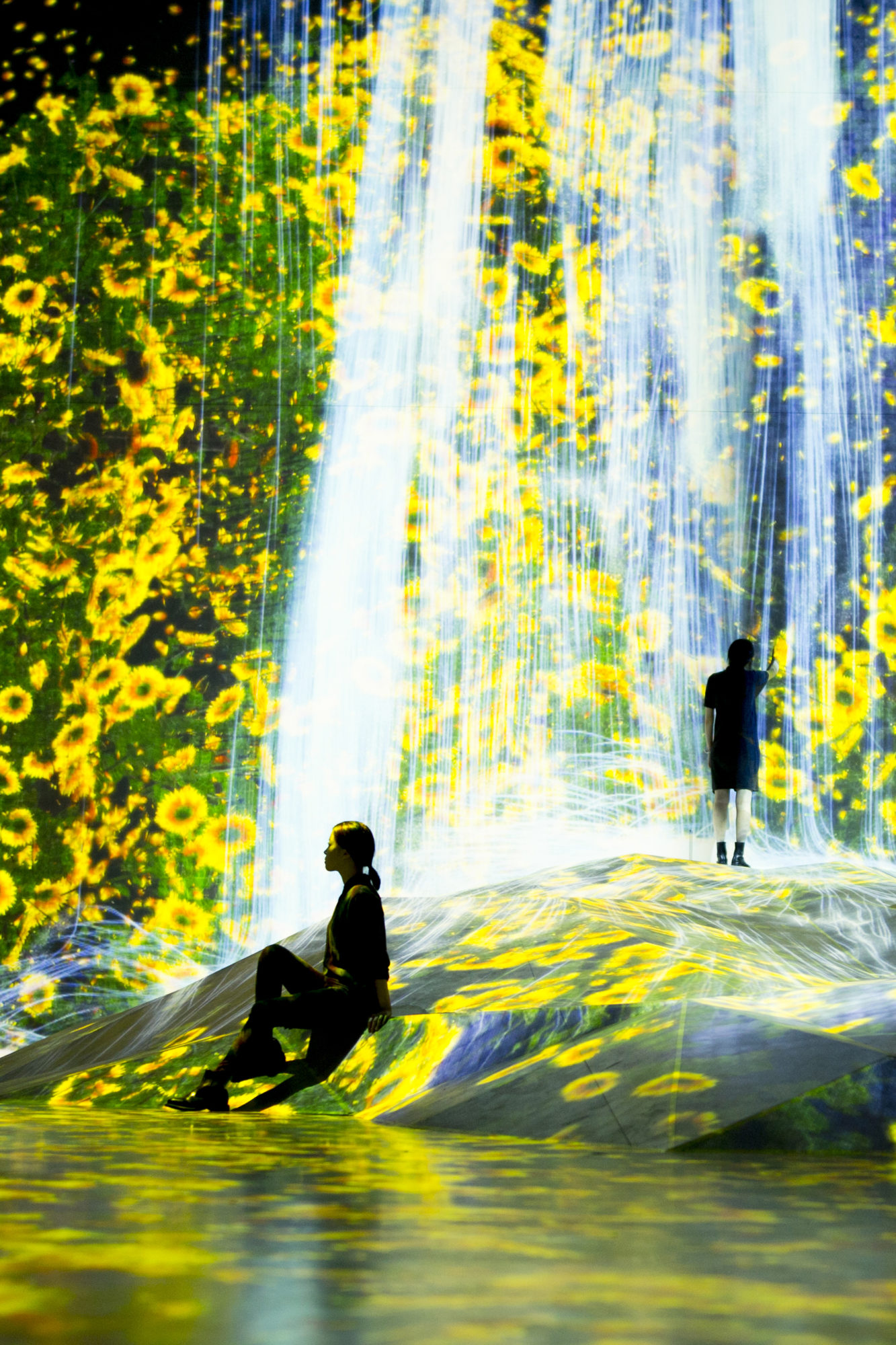 teamLab Borderless World - Universe of Water Particles on a Rock where People Gather