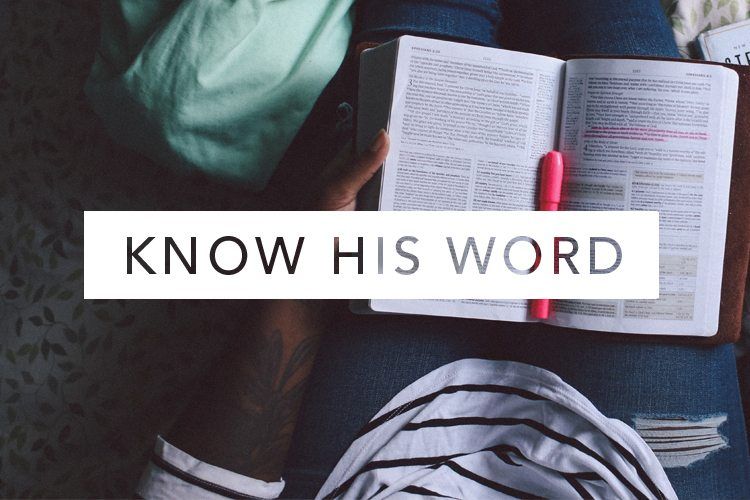 know his word history lifeway women all access