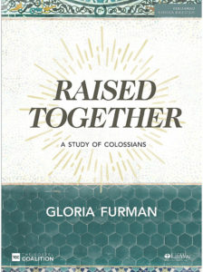 Cover of Raised Together by Gloria Furman