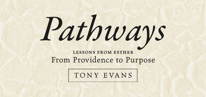 Study Excerpt: Pathways