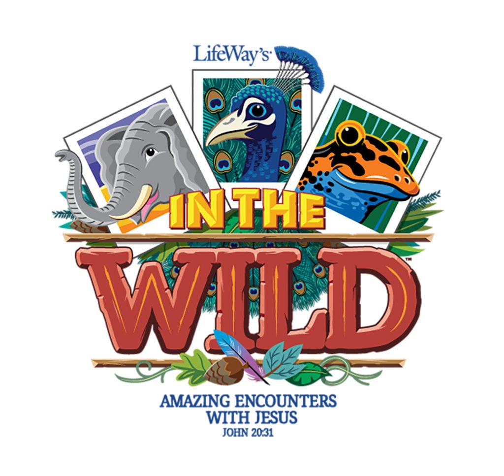Image result for into the wild vbs