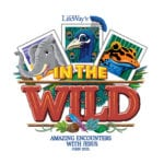 2019 VBS takes kids 'in the wild'