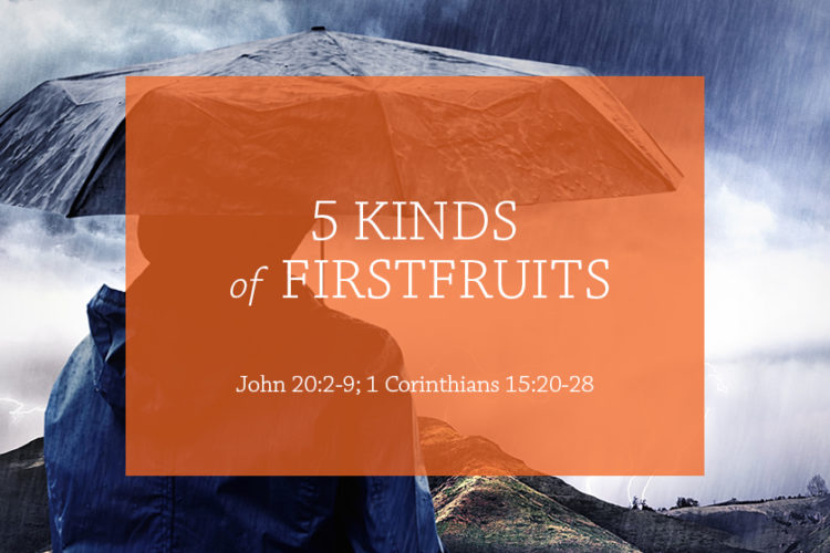 5 Kinds of Firstfruits (Session 5 – John 20:3-9; 1 Corinthians 15:20-28)