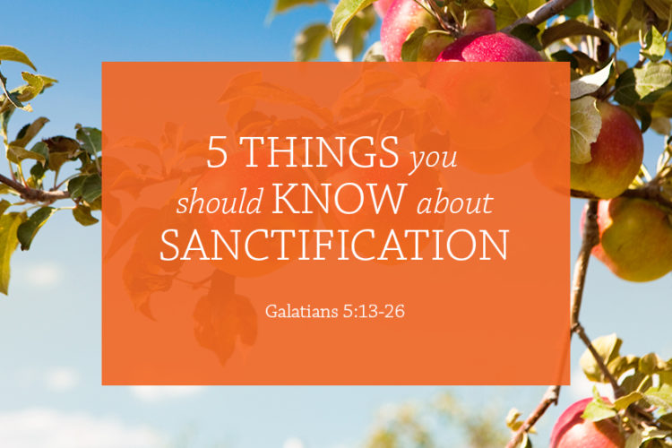 5 Things You Should Know About Sanctification (Session 6 – Galatians 5:13-26)