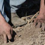 Digging Final