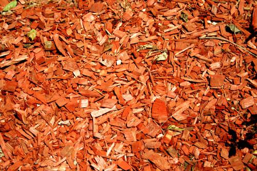 up close photo of mulch