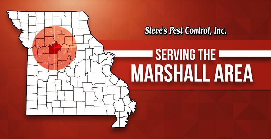 Marshall-resized