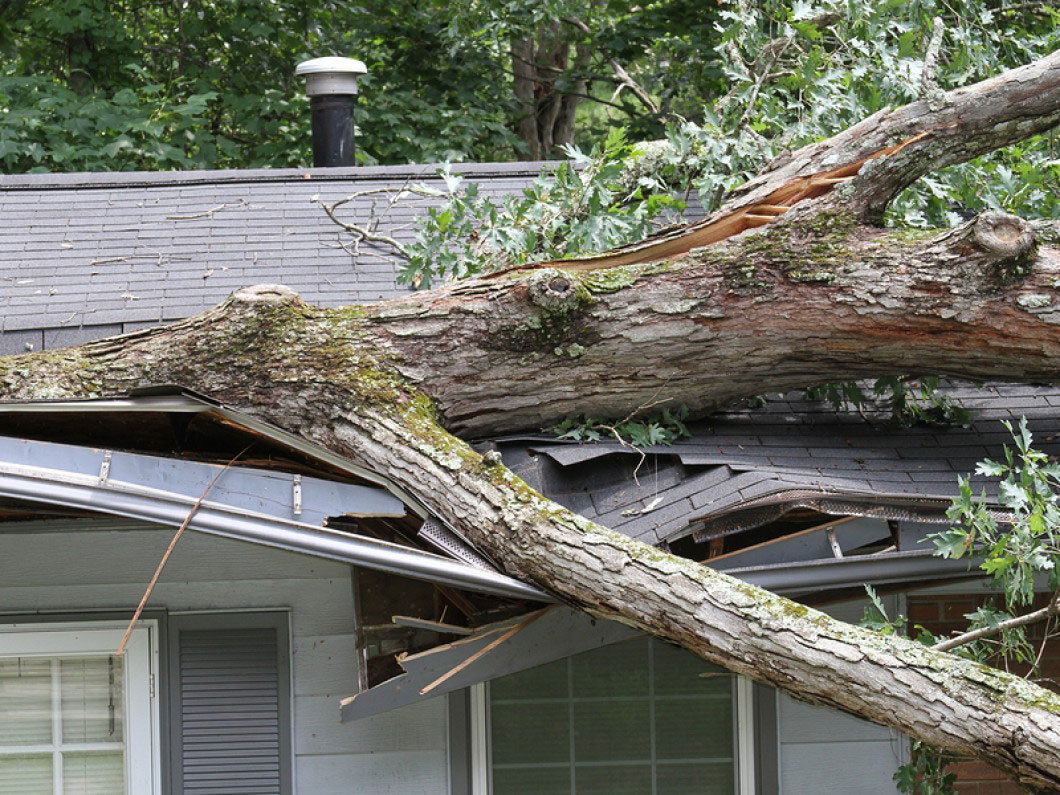 Storm-Damage-21500924