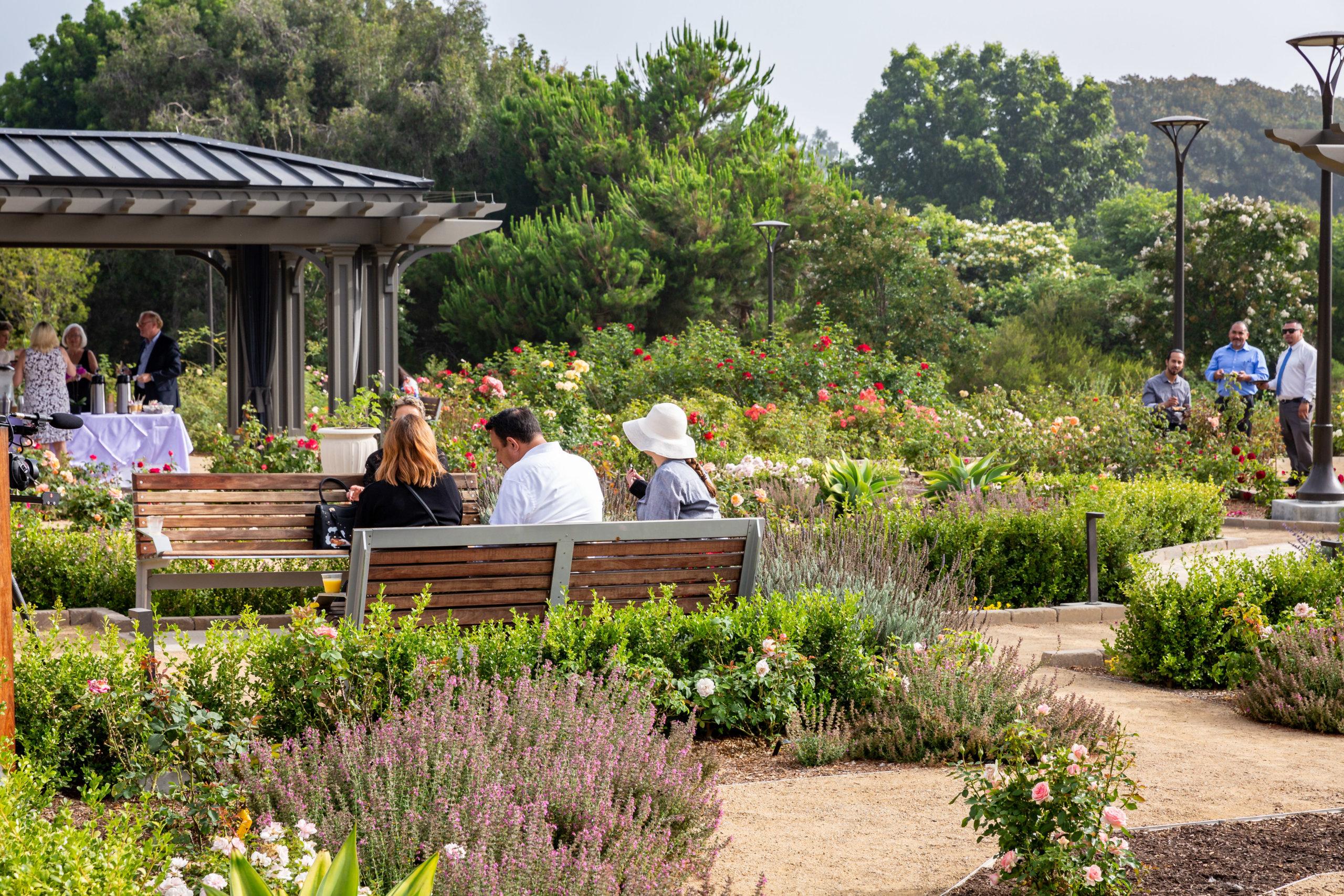 Botanic garden 9
