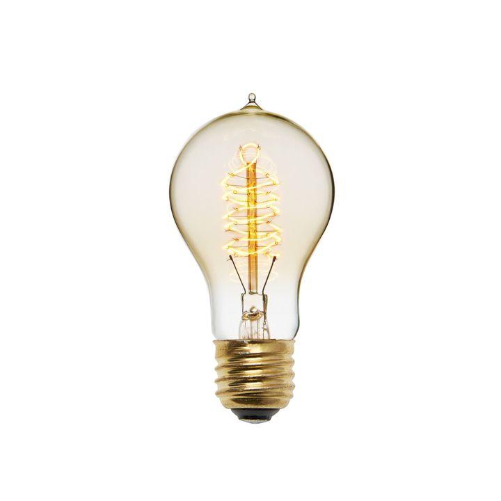 Crown Heights A19 Vintage Edison Bulb, 40W (E26) - Single