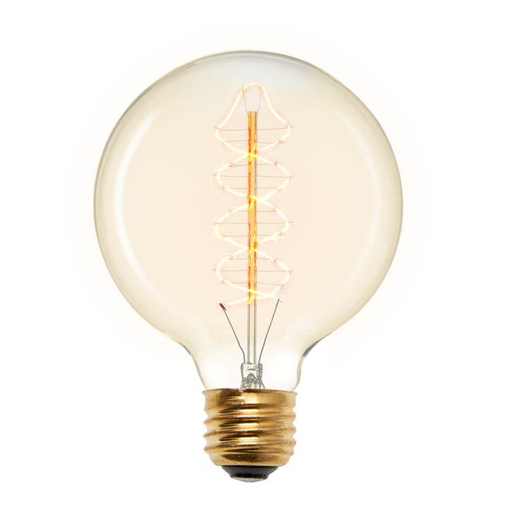 Red Hook G40 Vintage Edison Bulb, 40W (E26) - Single