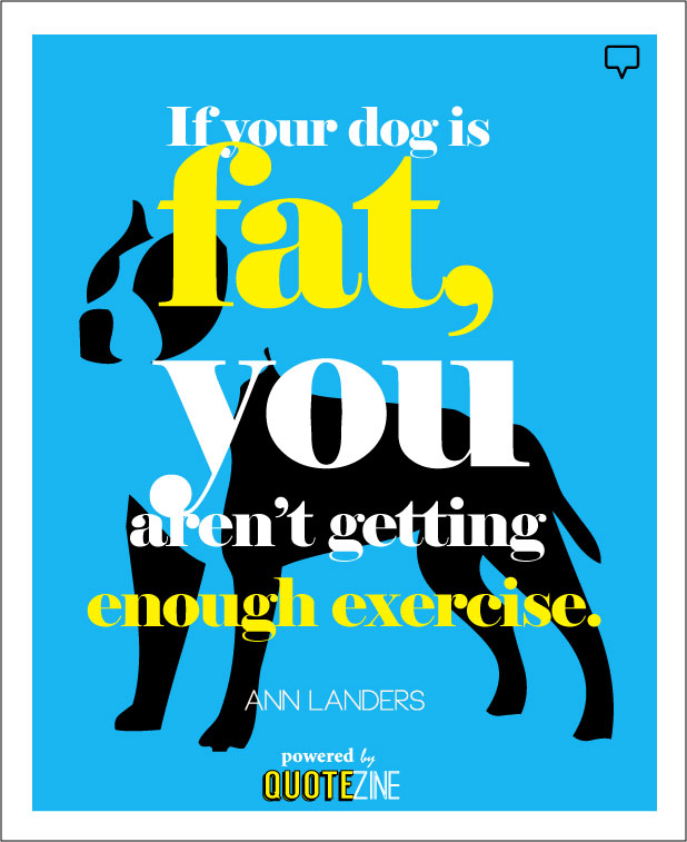 Dog Quotes: 25 Sayings Only Dog Lovers Will Understand