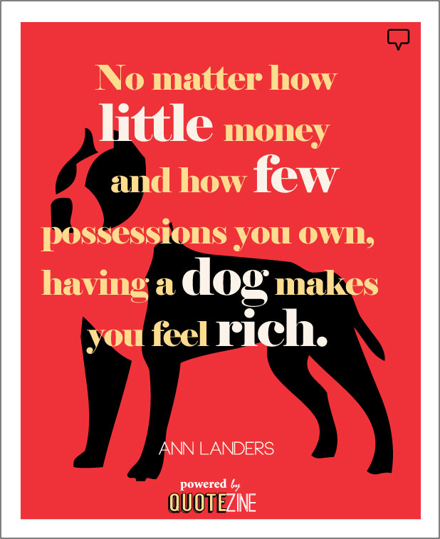 Dog Quotes 25 Sayings Only Dog Lovers Will Understand