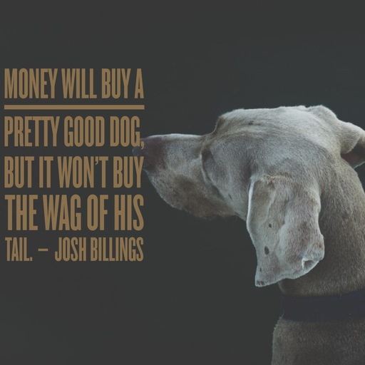 Dog Bite Lyrics