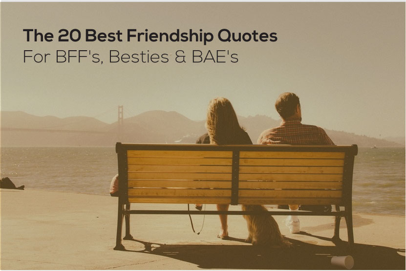 The 20 Best Funny Friendship Quotes For Bffs