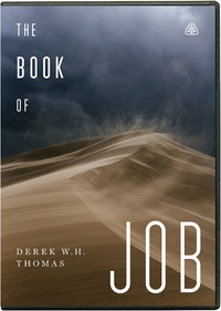 What the book of job teaches us