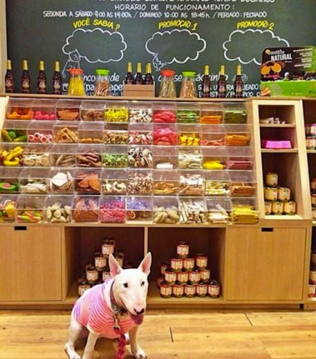 Algumas guloseimas pro seu animalzinho da Padaria Pet! Clica na galeria pra conferir mais comidinhas pra ele