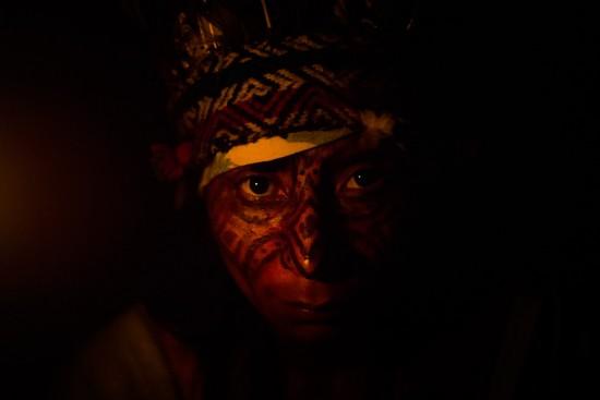 """Clica aqui pra ver as fotos da expô """"Conexão Amazônia - Mata Atlântica"""""""