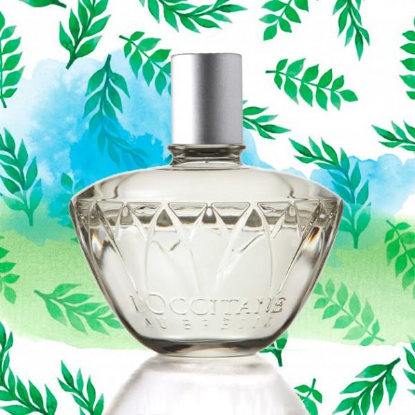 240417-perfume-dia-das-maes-4