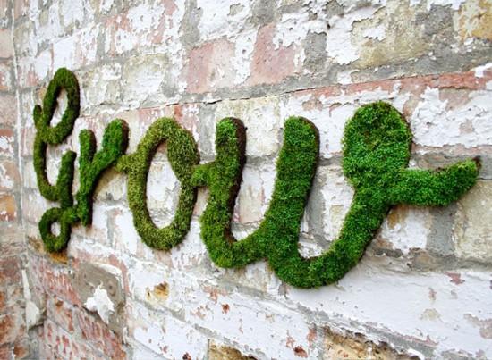 Um novo conceito de arte de rua: graffiti feito com plantas! Clica pra ver mais