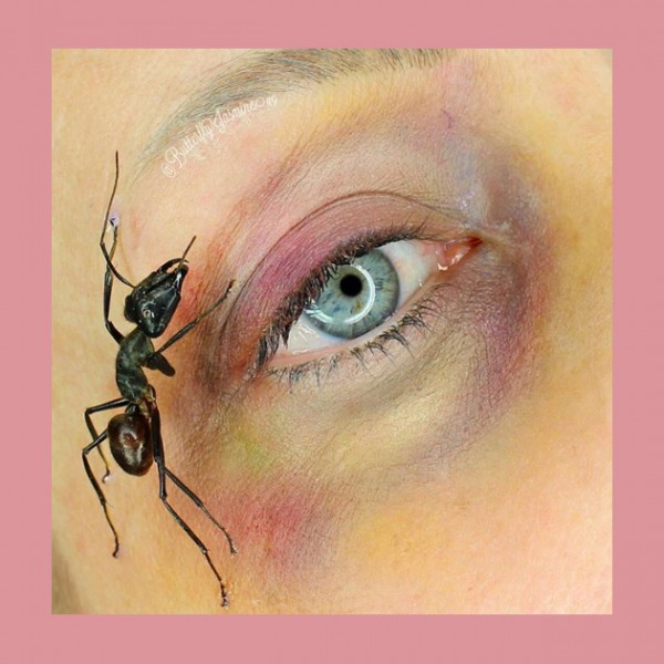 170117-inseto-minstagram2