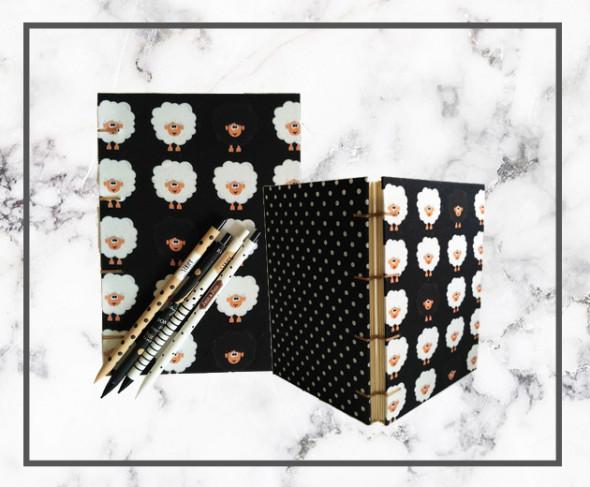 070818-cadernos-e-canetas01