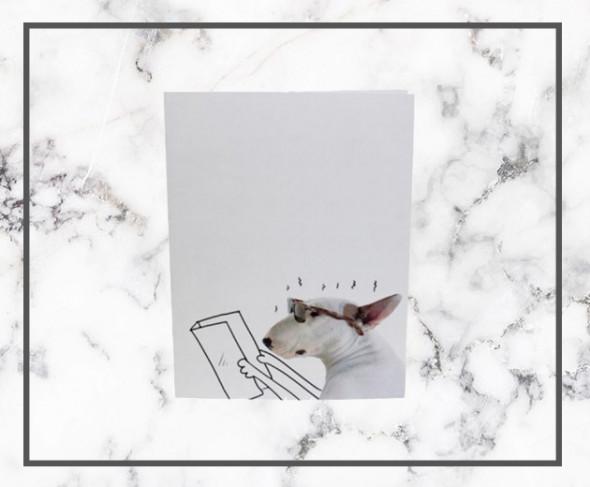 070818-cadernos-e-canetas10