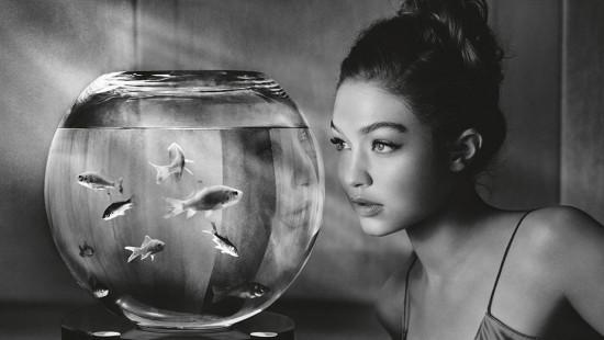 Gigi Hadid, uma das estrelas do calendário