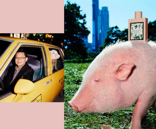 O Ano do Porco chegou e separamos algumas opções de roupas e acessórios inspiradas no bichinho pra você entrar na vibe, vem ver!