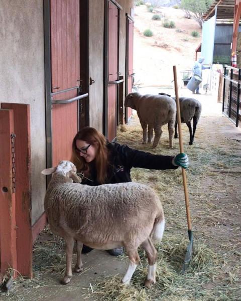110219-beleza-vegana-farmsanctuary