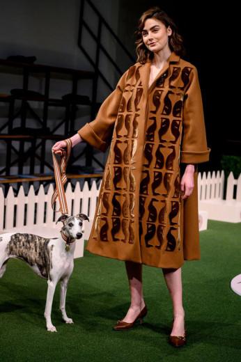 """O desfile mais fofo da temporada! """"Roseminster Dog Show"""", o espetáculo de Lela Rose com participação especial de cachorros - vem saber mais!"""