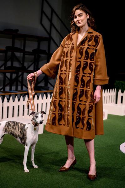120219-lelarose-dog-show-04