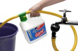 Produtos de limpeza concentrados são opções mais sustentáveis