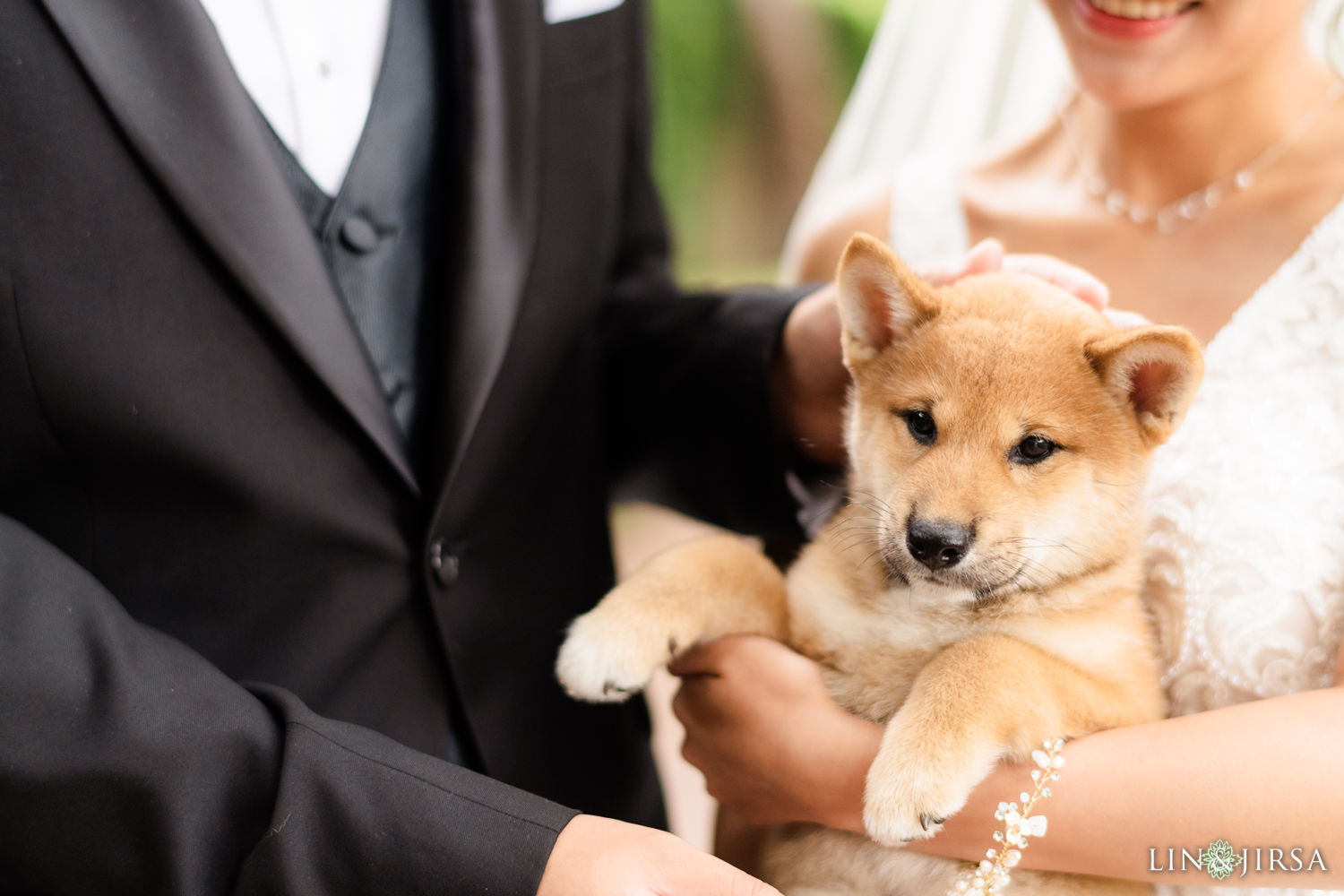 Wedding Pets Pelican Hill Newport Beach Wedding