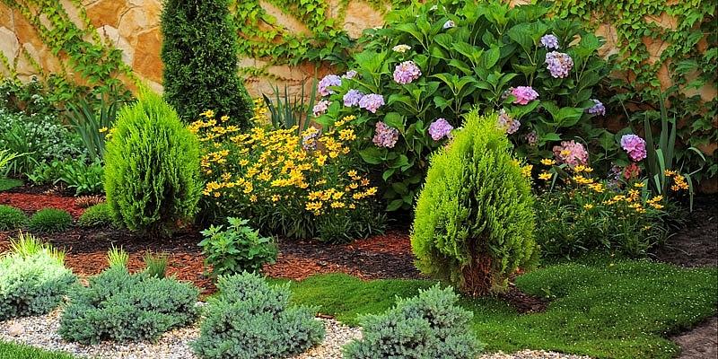 Transforme su espacio exterior jardines terrazas y for Arbustos decorativos para jardin