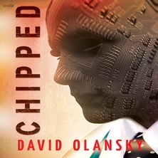 Chipped cover image