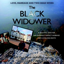 The Black Widower cover image