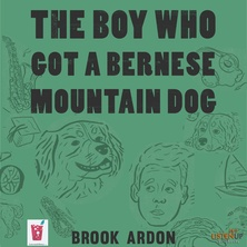 The Boy Who Got a Bernese Mountain Dog