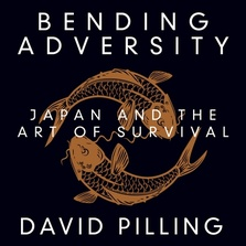 Bending Adversity cover image