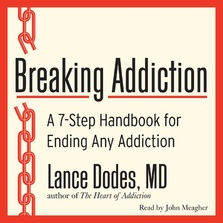 Breaking Addiction cover image