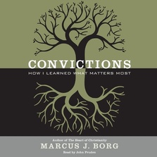 Convictions cover image