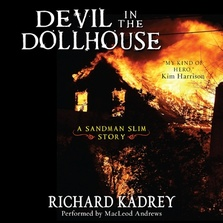 Devil in the Dollhouse cover image
