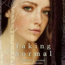 Faking Normal cover image