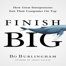 Finish Big cover image