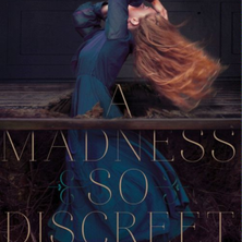 A Madness So Discreet cover image