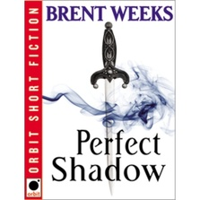 Perfect Shadow cover image