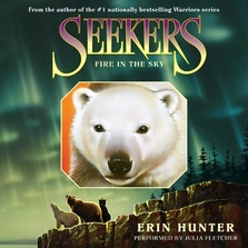 Seekers #5: Fire in the Sky cover image
