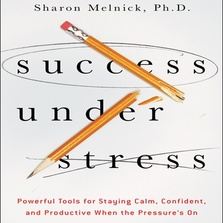 Success Under Stress cover image