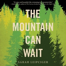 The Mountain Can Wait cover image